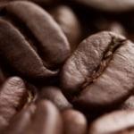 modellante caffe